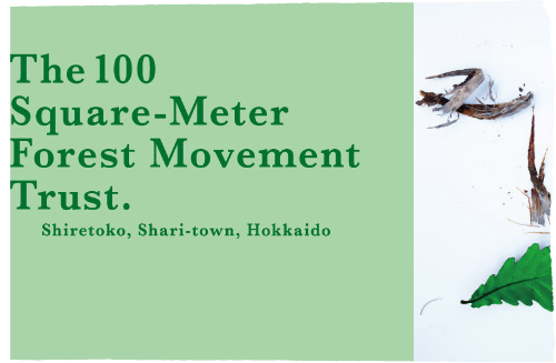 Shiretoko: The 100 Square Meter Movement (2019-)